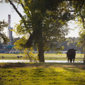 Public Enemy No. 1: Now It's Fracking, not Cows!