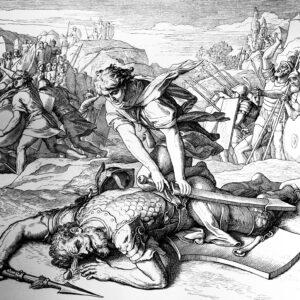 David v. Goliath in Cyberspace