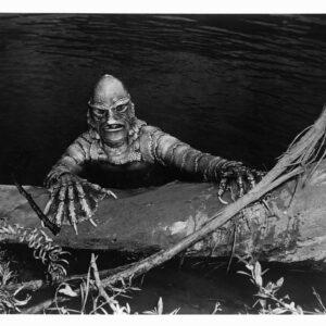 The Swamp Strikes Back