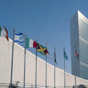 Will the U.N. Security Council Rescue Net-Zero?